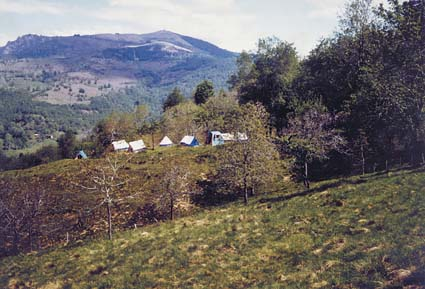 Young Mirapuri: tent-colony